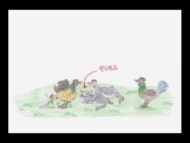 Ansichtkaart Kippen